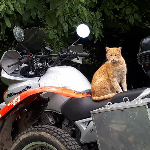 Jazda próbna motocykl