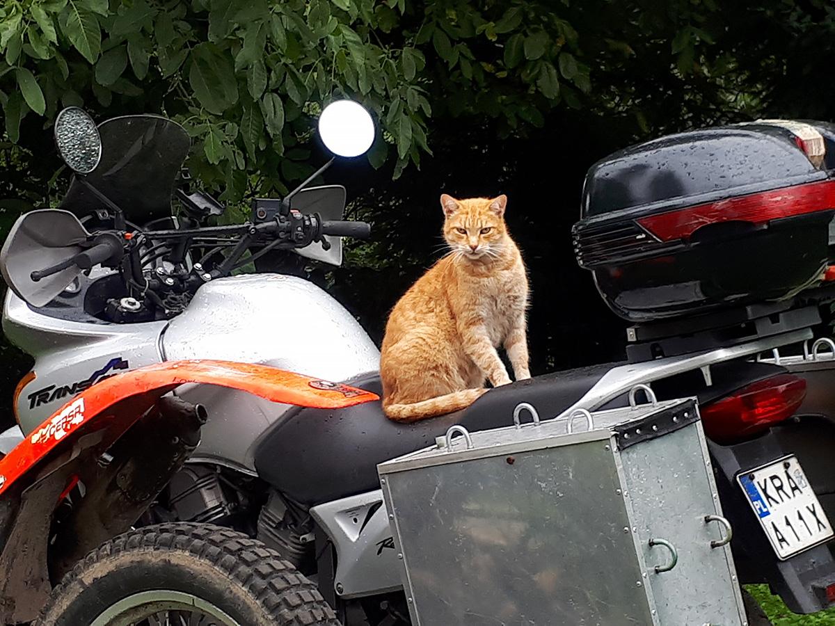 Jazda próbna na motocyklu